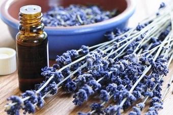 huile essentielle de lavande fine